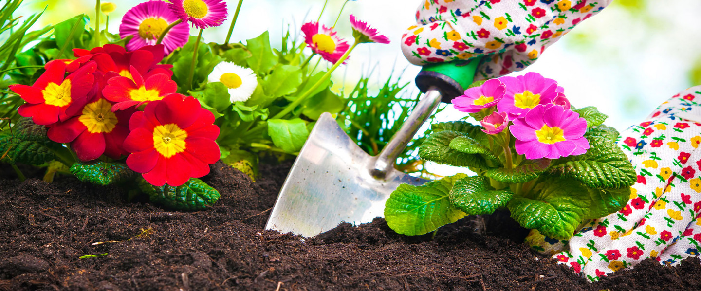 Prepare you Lawn for the Fall Season in Paducah, KY & Marion, IL
